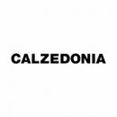 Calzedonia Coupons